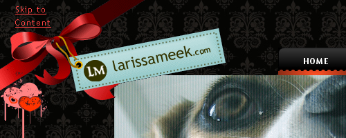Larissa Meek