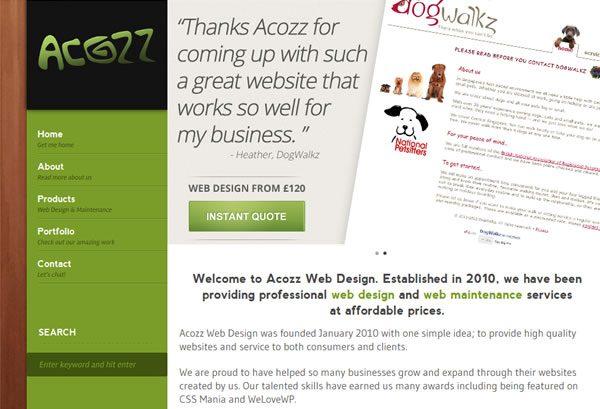 acozz web design