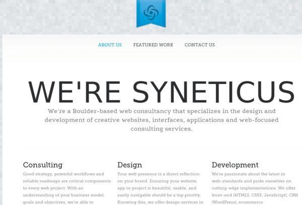 wwwsyneticuscom
