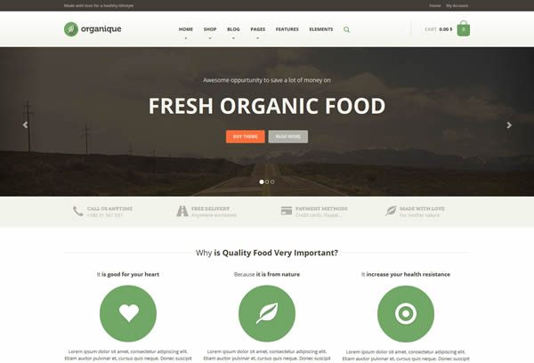 organique food theme wordpress