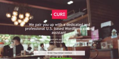 CureWP Dedicated WordPress Assistants for Entrepreneurs