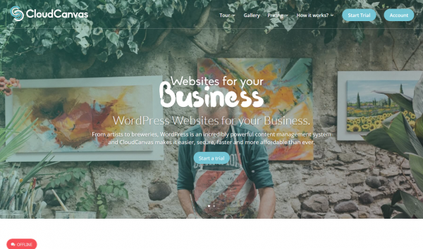 CloudCanvas Websites All In One Fully Managed WordPress Platform