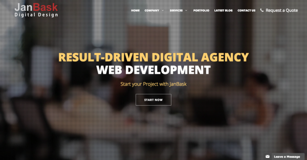 Web Design Company Washington DC Virginia USA Web Designing