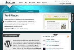 Wordpress Blog Készítés