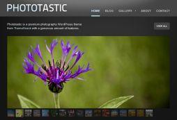 Phototastic - Premium Photography Theme