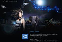 web-designer freelancer portfolio