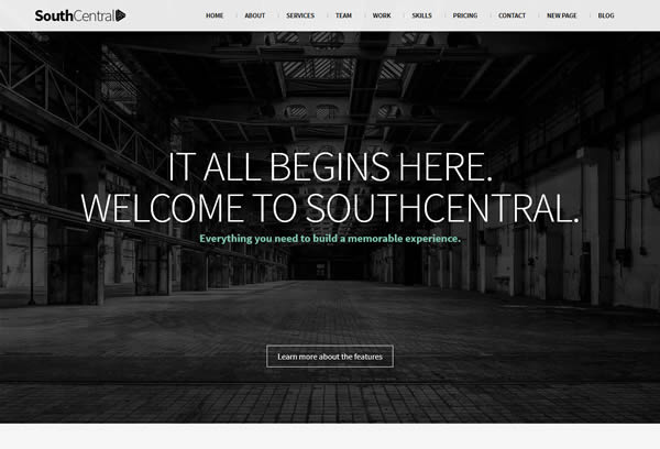 SouthCentral - One Page Parallax WordPress Theme