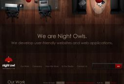 Night Owl Interactive